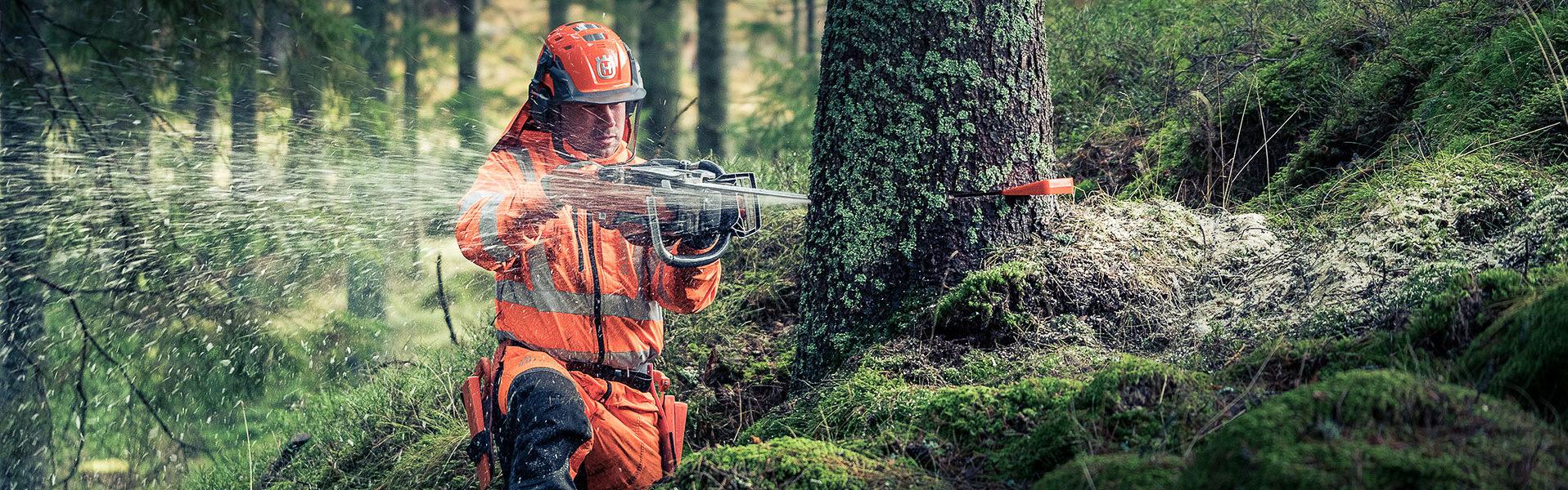 Arborist i göteborg
