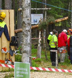utbildning säker skog, ta motosågskörkort