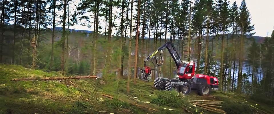 Skogsavverkning Tradnu AB i och runt Göteborg med omnejd