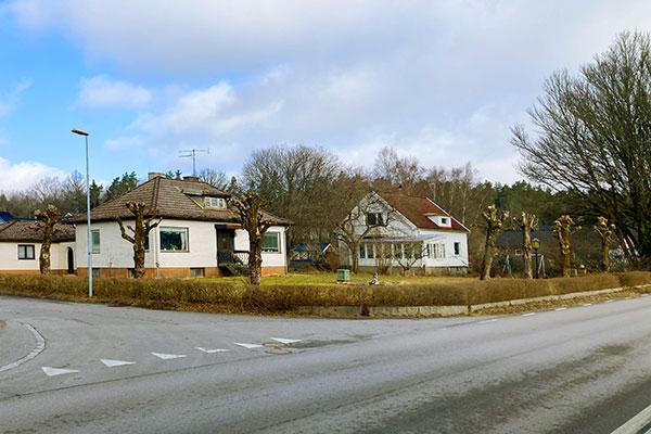 Hamlig av träd i och runt Göteborg Tradnu AB